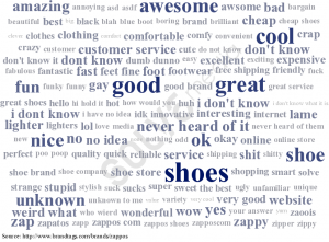 Brandtags zappos