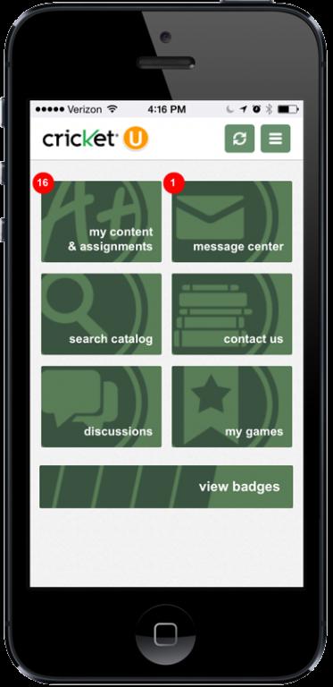 Cricket gaming menu