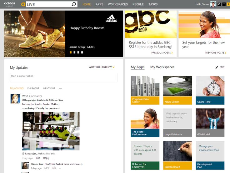 Adidas intranet, 2015
